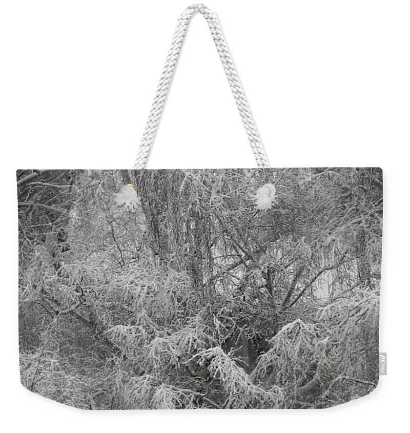 Winter Weekender Tote Bag featuring the photograph Winter Trees by Tim Allen