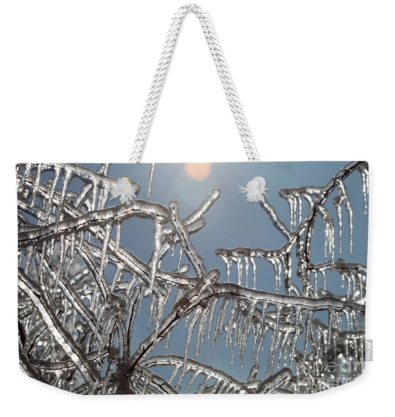 Winter Weekender Tote Bag featuring the photograph Winter Warmth by Nadine Rippelmeyer
