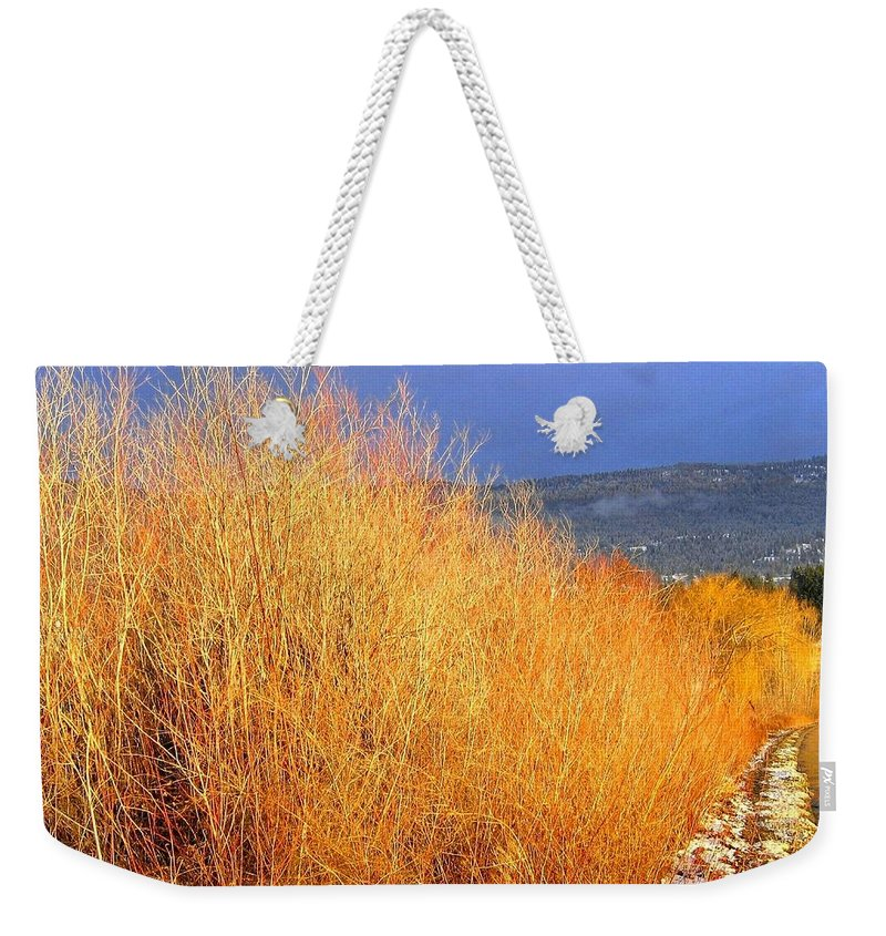 Willows Weekender Tote Bag featuring the photograph Winter Willows by Will Borden