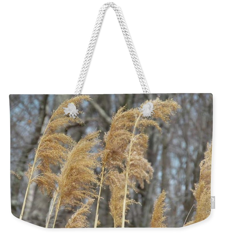 Weekender Tote Bag featuring the photograph Winter Wind by Jessica Murphy