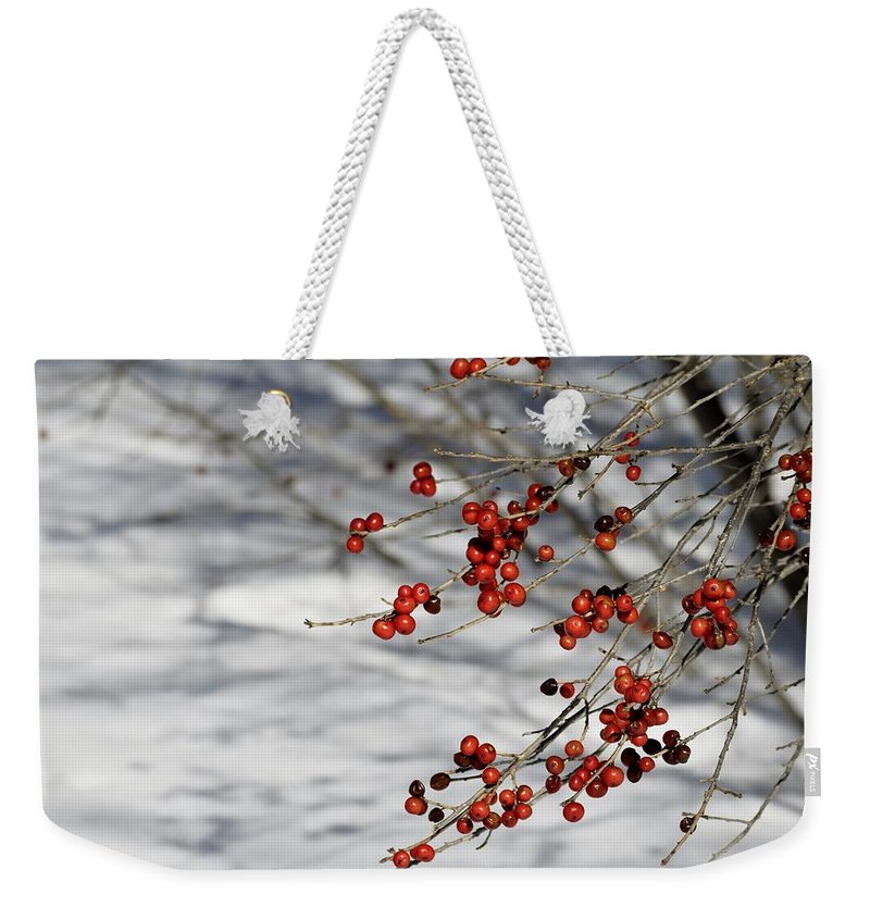 Winter Weekender Tote Bag featuring the photograph Winterberries by Pam Meoli