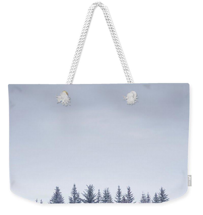 Kremsdorf Weekender Tote Bag featuring the photograph Winterscape by Evelina Kremsdorf