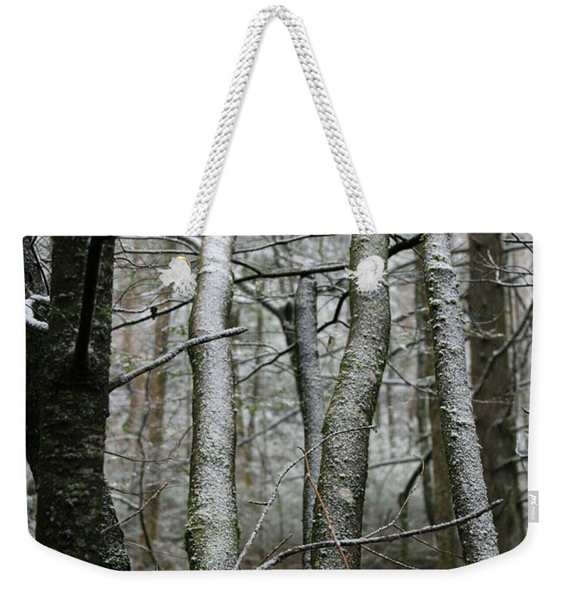 Tree Woods Forest Wood Snow White Green Winter Season Nature Cold Weekender Tote Bag featuring the photograph Wintery Day by Andrei Shliakhau