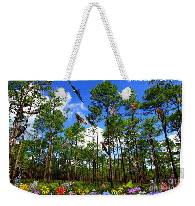 Withlacoochee State Forest Weekender Tote Bag featuring the photograph Withlacoochee State Forest Nature Collage by Barbara Bowen