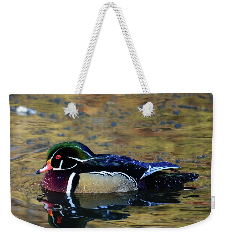 Wood Duck Weekender Tote Bag featuring the photograph Wood Duck Drake by Whispering Peaks Photography