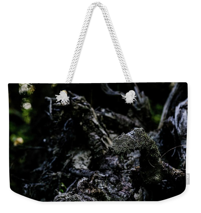 Creepy Weekender Tote Bag featuring the photograph Wood by John Gagnon
