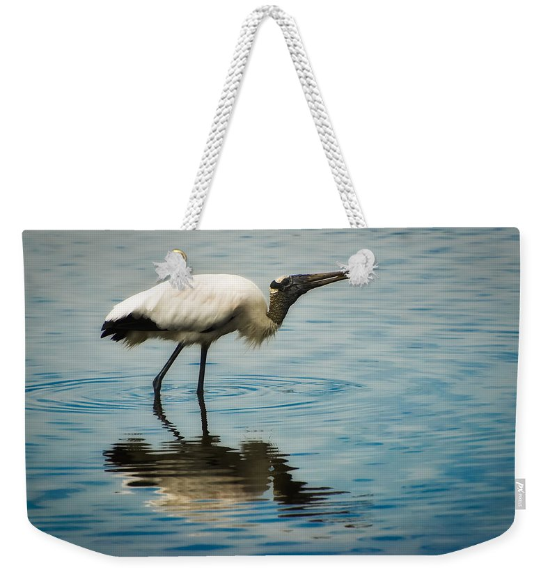 Stork Weekender Tote Bag featuring the photograph Wood Stork by Rich Leighton