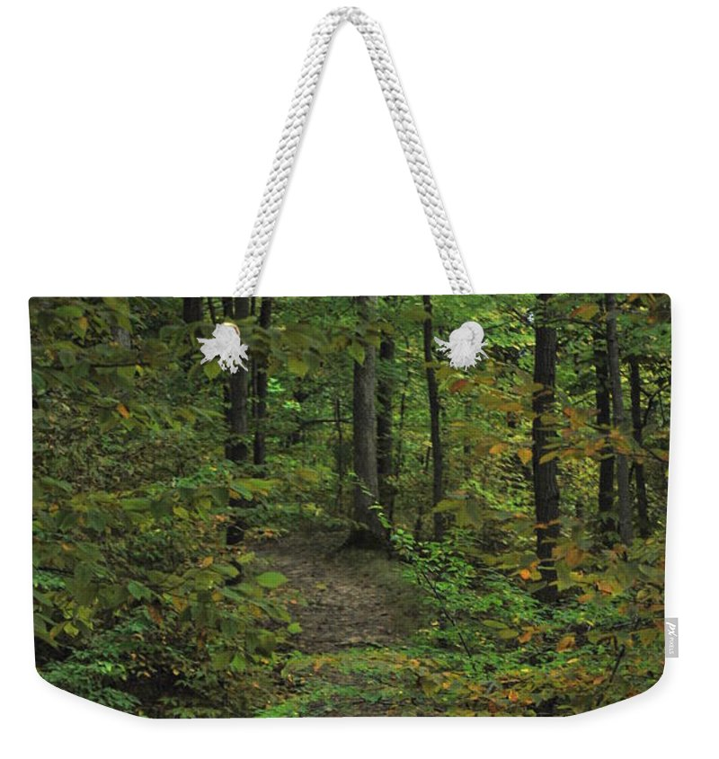 Wood Weekender Tote Bag featuring the photograph Woodland Steps by Michelle Hastings
