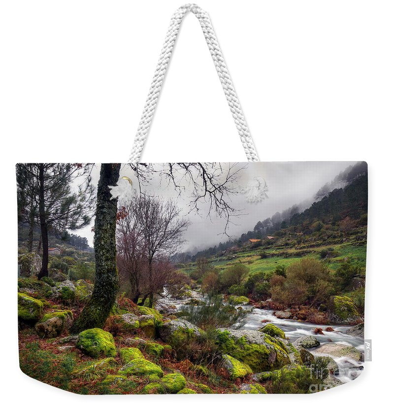 Autumn Weekender Tote Bag featuring the photograph Woods Landscape by Carlos Caetano