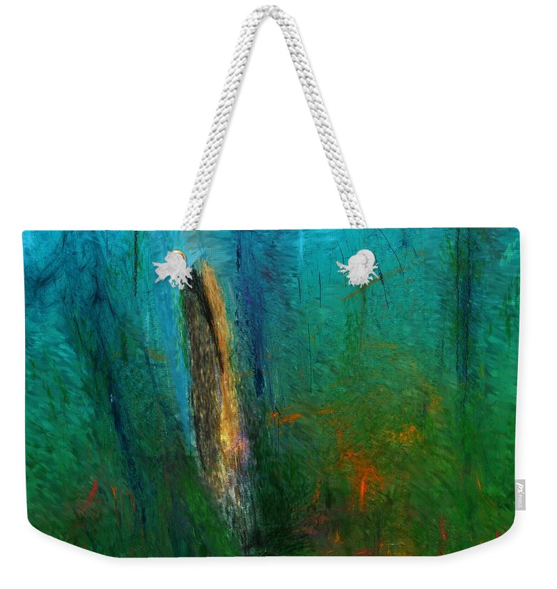 Digital Painting Weekender Tote Bag featuring the digital art Woods Scene 052010 by David Lane