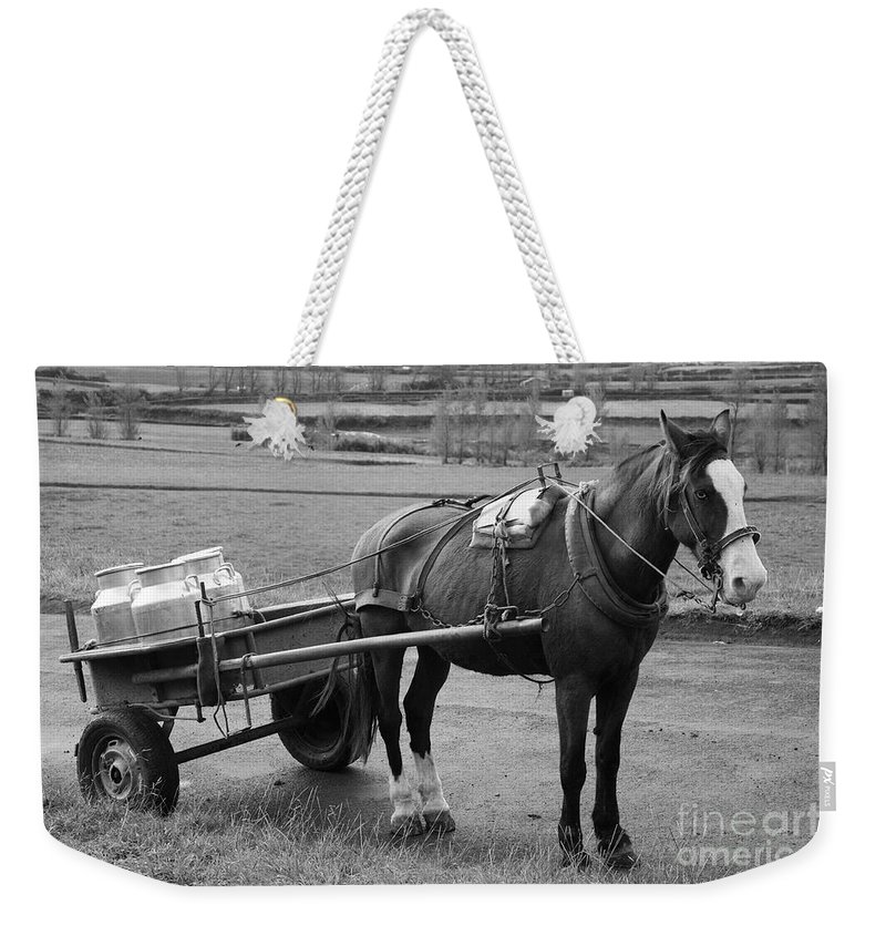 Cart Weekender Tote Bag featuring the photograph Work Horse And Cart by Gaspar Avila