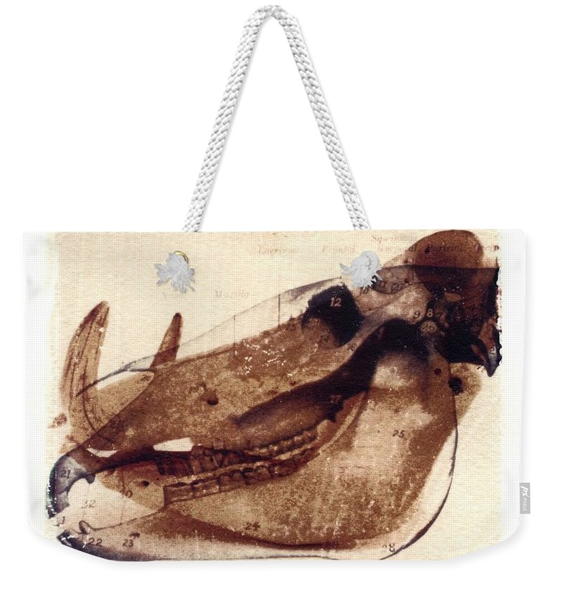 Polaroid Transfer Weekender Tote Bag featuring the photograph X Ray Terrestrial No. 6 by Jane Linders