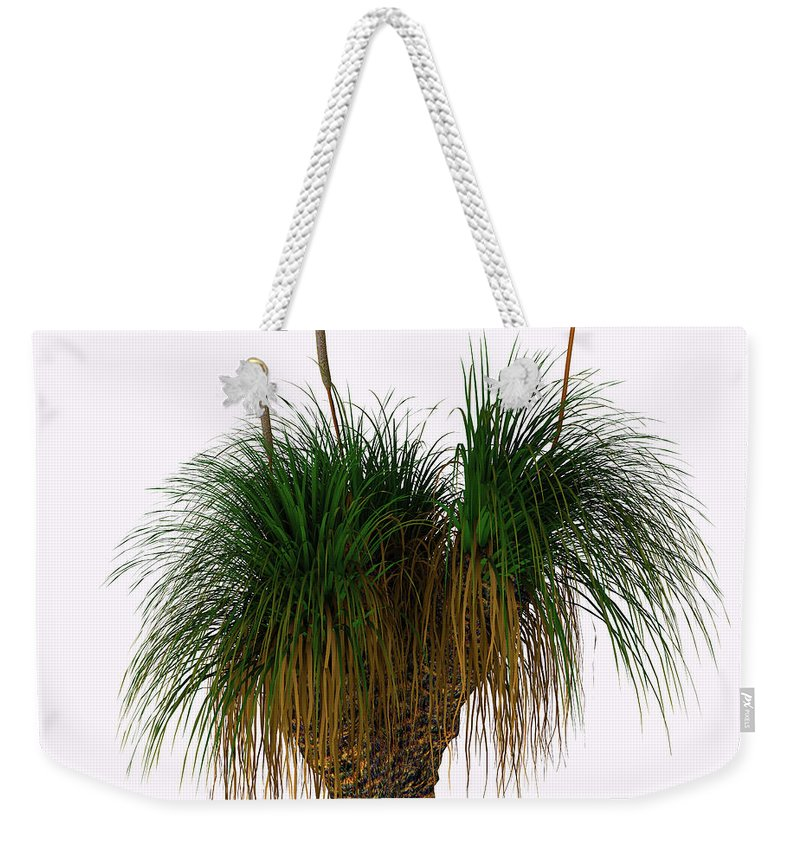3d Illustration Weekender Tote Bag featuring the painting Xanthorrhoea Australis Tree by Corey Ford