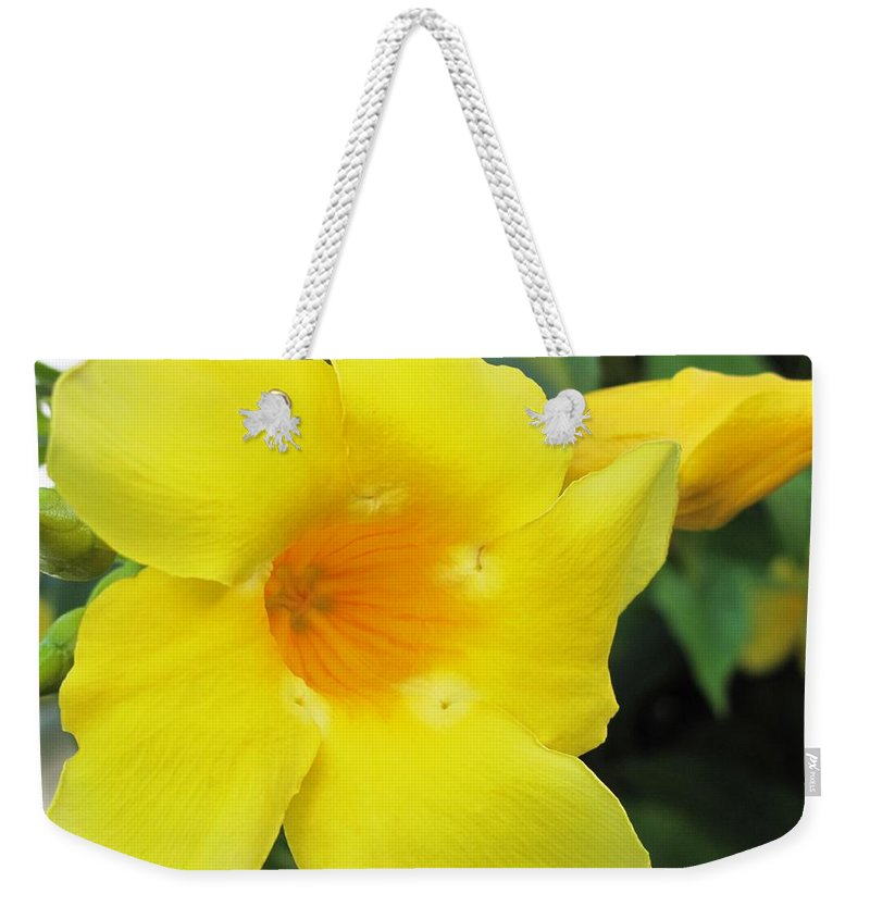 Hibiscus Weekender Tote Bag featuring the photograph Yelllow by Ian MacDonald