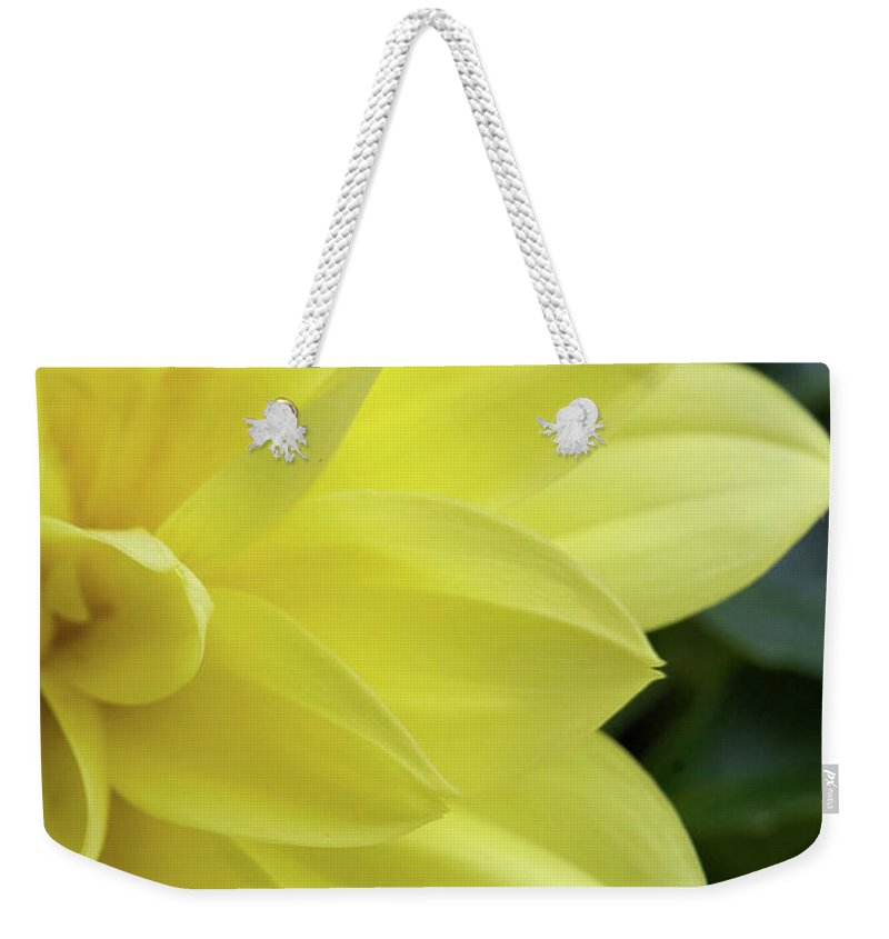 Art Weekender Tote Bag featuring the photograph Yellow by Alan Look