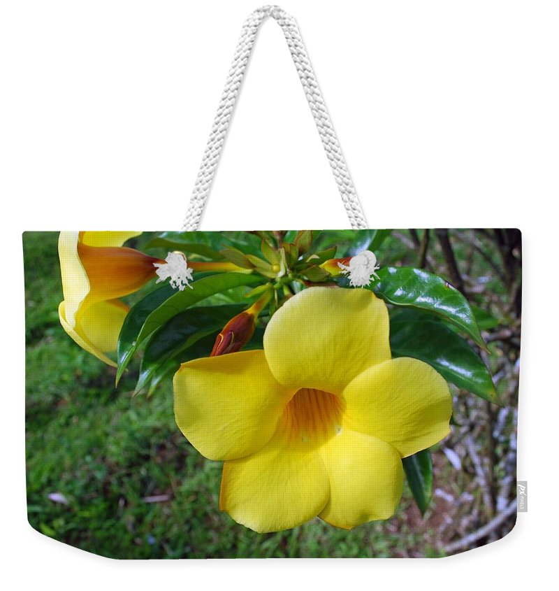 Flower Weekender Tote Bag featuring the photograph Yellow Beauty by Gary Wonning