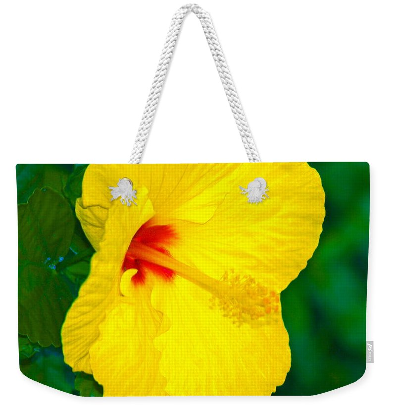 Flower Weekender Tote Bag featuring the photograph Yellow Blossom by Athala Carole Bruckner