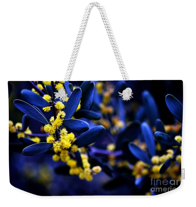Clay Weekender Tote Bag featuring the photograph Yellow Bursts In Blue Field by Clayton Bruster