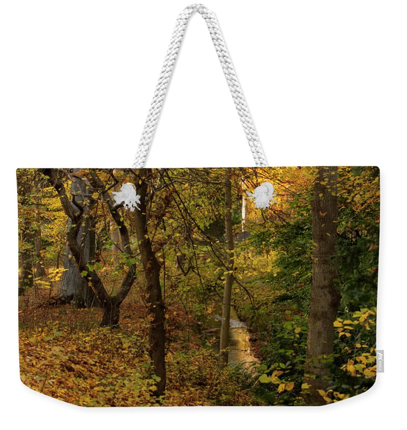 Nature Weekender Tote Bag featuring the photograph yellow Carpet by John Fotheringham