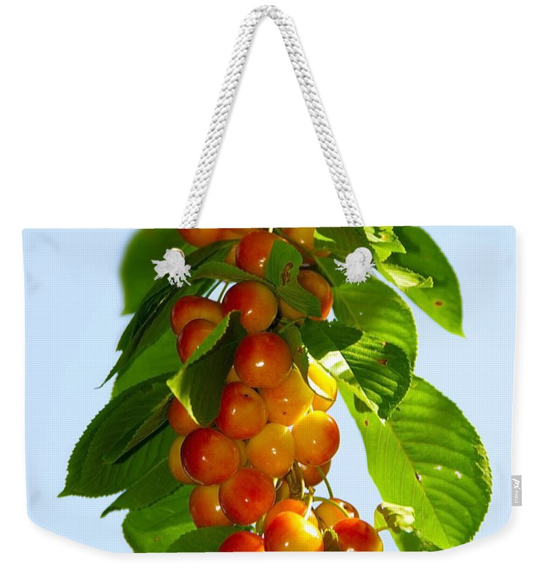 Black Weekender Tote Bag featuring the photograph Yellow Cherries by Svetlana Sewell