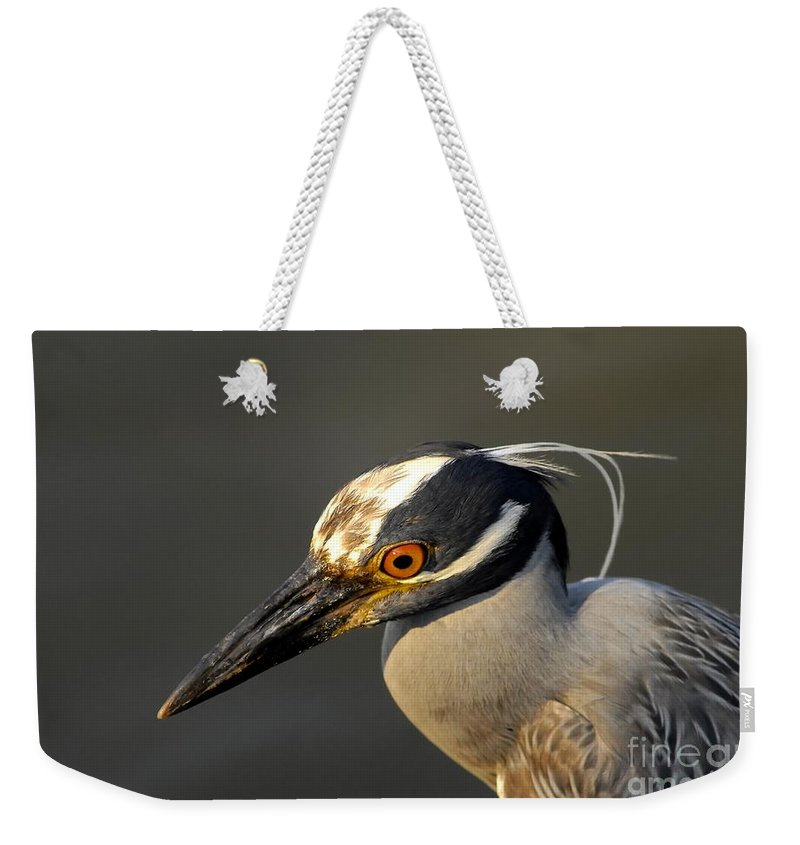 Yellow Crowned Night Heron Weekender Tote Bag featuring the photograph Yellow Crowned Night Heron by David Lee Thompson
