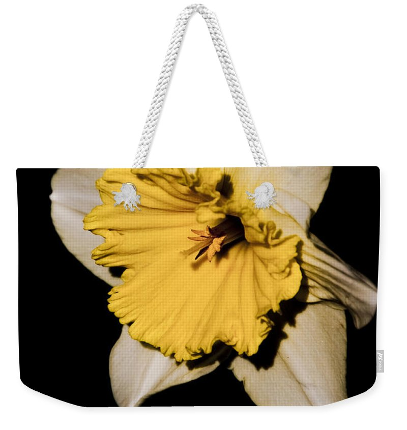 Daffodil Weekender Tote Bag featuring the photograph Yellow Daffodil by Steven Natanson