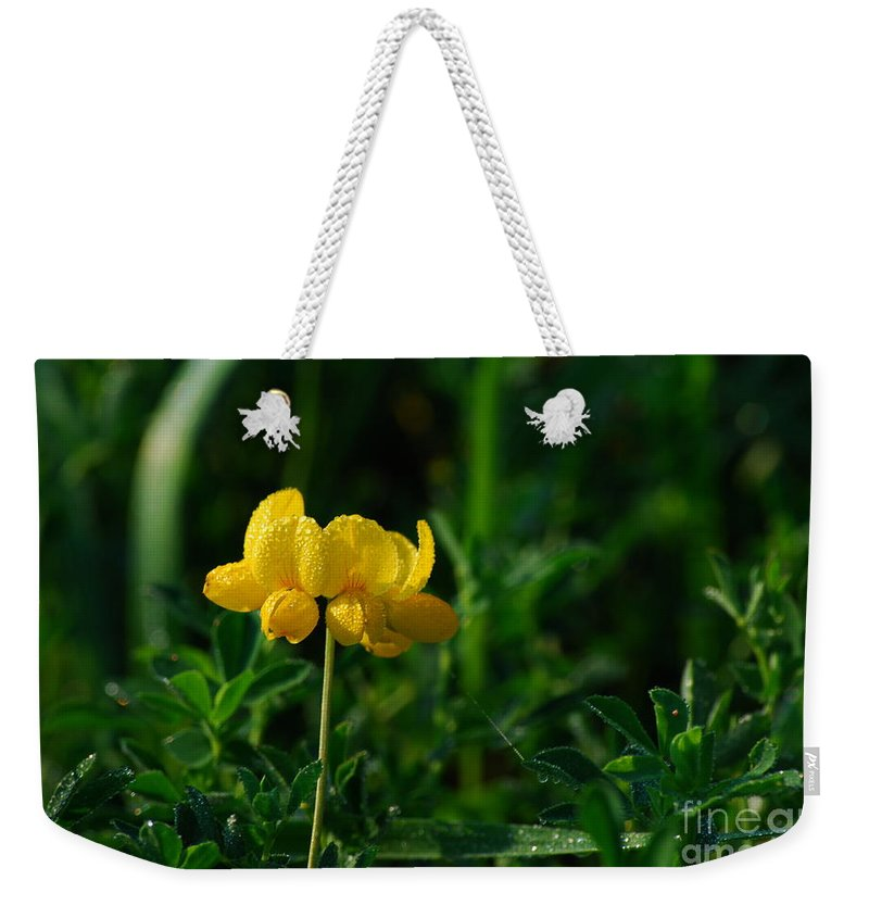Birds Foot Trefoil Weekender Tote Bag featuring the photograph Yellow Dew Drops by Michelle Hastings
