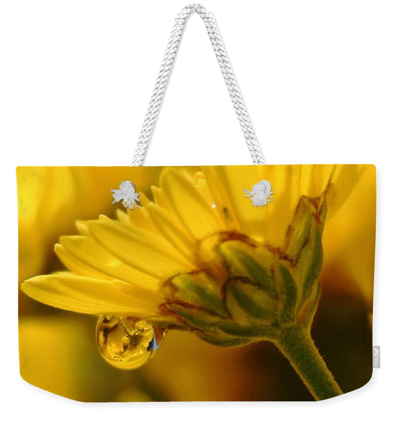 Flowers Weekender Tote Bag featuring the photograph Yellow Drip by Linda Sannuti