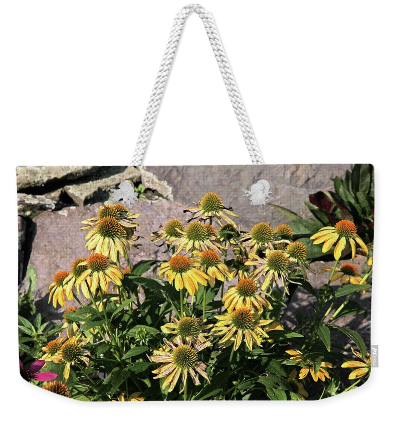 Yellow Echinacea Weekender Tote Bag featuring the photograph Yellow Echinacea, Straw Flowers Gray Stone Background 2 9132017 by David Frederick
