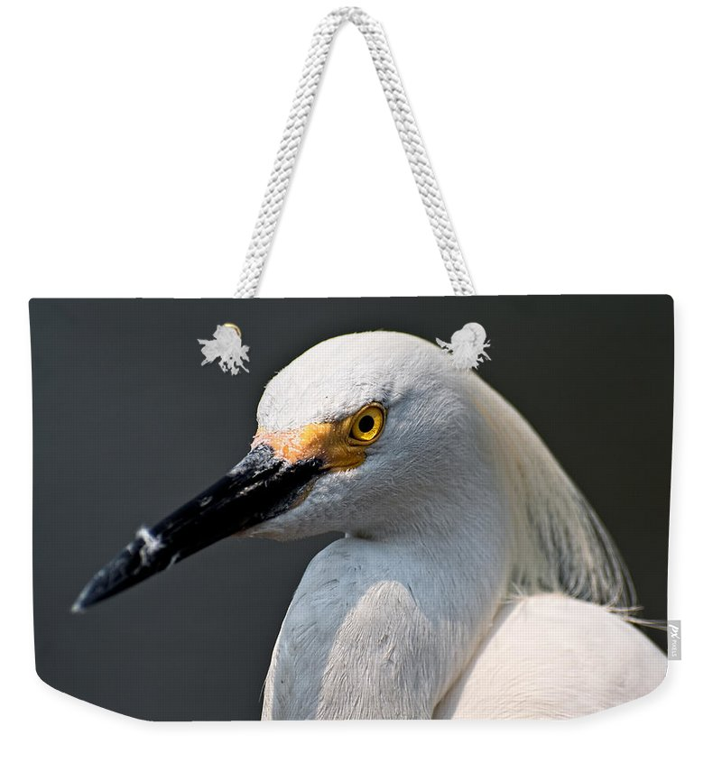 Snowy Egret Weekender Tote Bag featuring the photograph Yellow Eye by Christopher Holmes