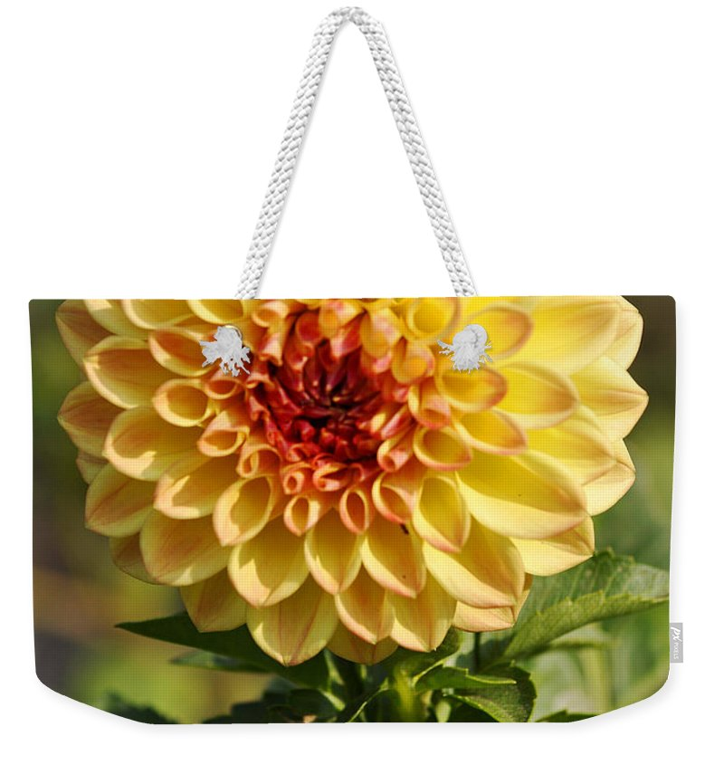 Clay Weekender Tote Bag featuring the photograph Yellow Flora by Clayton Bruster