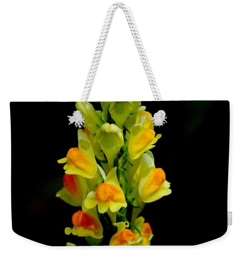 Digital Photograph Weekender Tote Bag featuring the photograph Yellow Floral 7-24-09 by David Lane