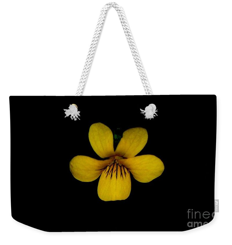 Landscape Weekender Tote Bag featuring the photograph Yellow Flower 1 by David Lane