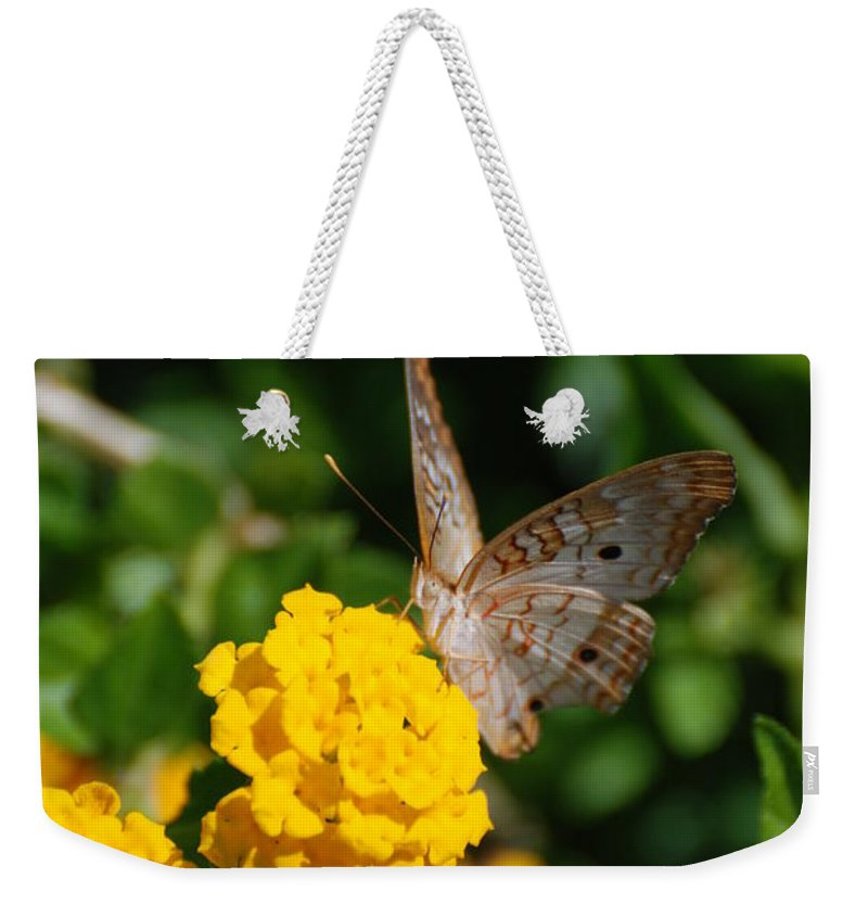 Butterfly Weekender Tote Bag featuring the photograph Yellow Flower Brown Fly by Rob Hans