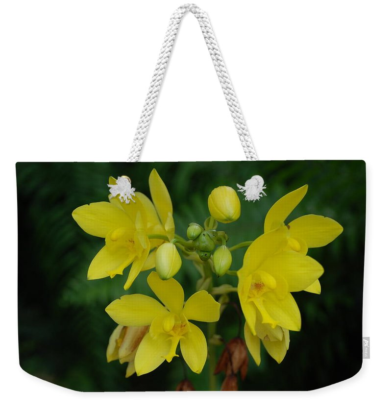 Macro Weekender Tote Bag featuring the photograph Yellow Flower by Rob Hans