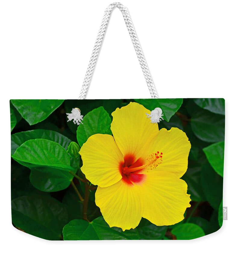 Flower Weekender Tote Bag featuring the photograph Yellow Hibiscus 3388 by Dick Hopkins