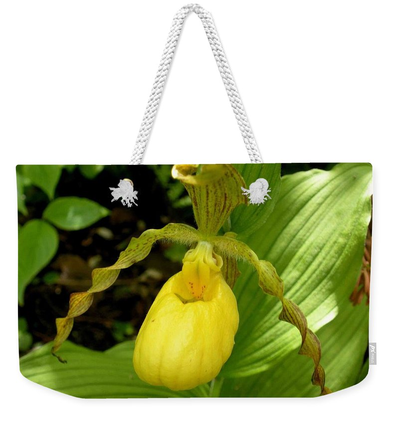 Orchid Weekender Tote Bag featuring the photograph Yellow Lady's Slipper by Nelson Strong
