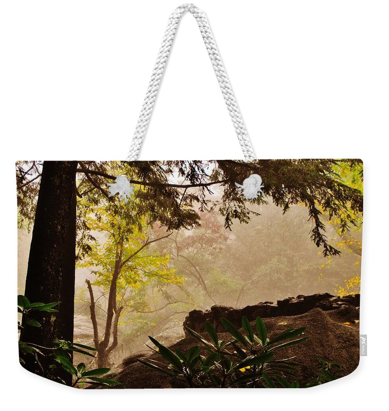 Rock City Weekender Tote Bag featuring the photograph Yellow Leaves In The Mist by Lori Mahaffey