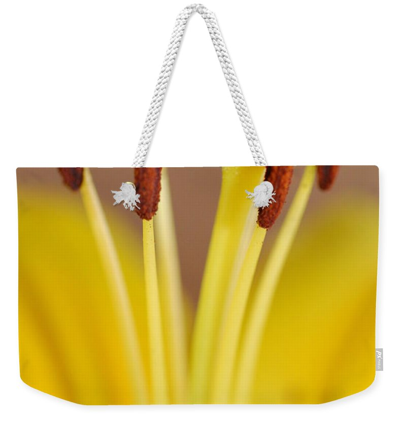 Flower Weekender Tote Bag featuring the photograph Yellow Lily Reach 1 by Amy Fose