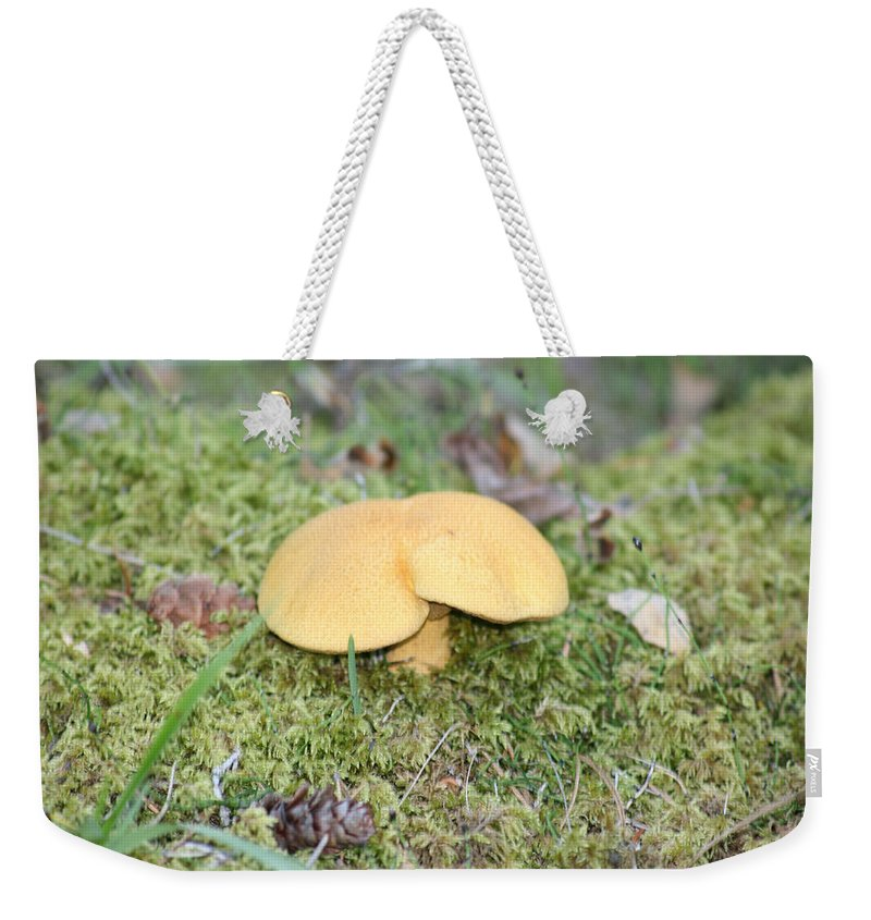 Mushrooms Nature Plants Wild Moss Acorns Forest Weekender Tote Bag featuring the photograph Yellow Mushroom by Andrea Lawrence