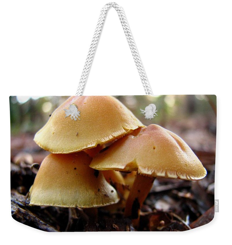 Mushroom Weekender Tote Bag featuring the photograph Yellow Mushrooms 1 by J M Farris Photography