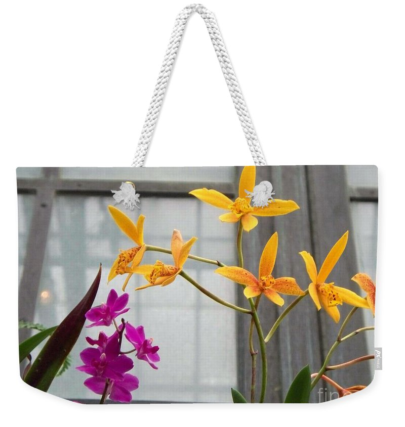Yellow Weekender Tote Bag featuring the painting Yellow Orange And Purple Flowers by Eric Schiabor