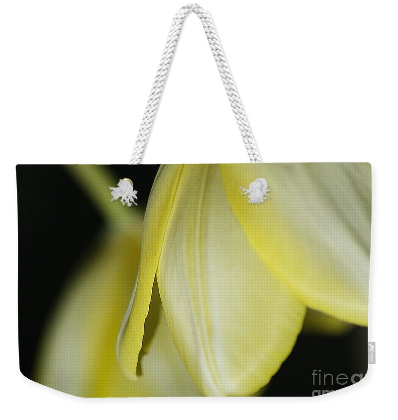 Tulip Weekender Tote Bag featuring the photograph Yellow Petals by Deborah Benoit