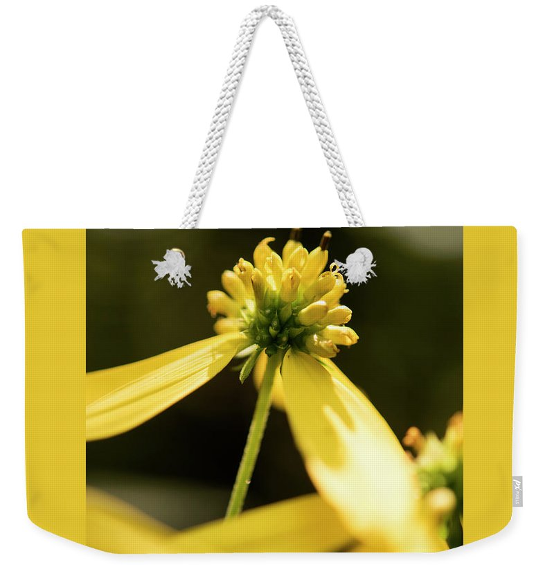 Yellow Flower Weekender Tote Bag featuring the photograph Yellow Pollinate by Michelle Himes
