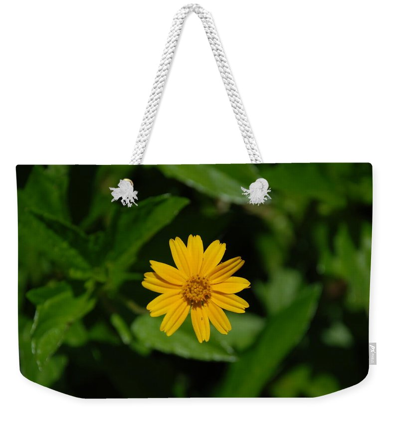 Macro Weekender Tote Bag featuring the photograph Yellow by Rob Hans