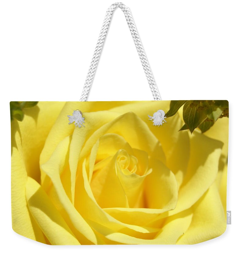 Yellow Weekender Tote Bag featuring the photograph Yellow Rose by Heidi Poulin