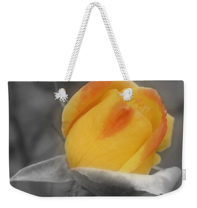 Rose Weekender Tote Bag featuring the photograph Yellow Rosebud Partial Color by Smilin Eyes Treasures