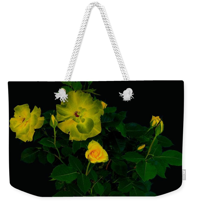 Rose Weekender Tote Bag featuring the photograph Yellow Roses by Helmut Rottler