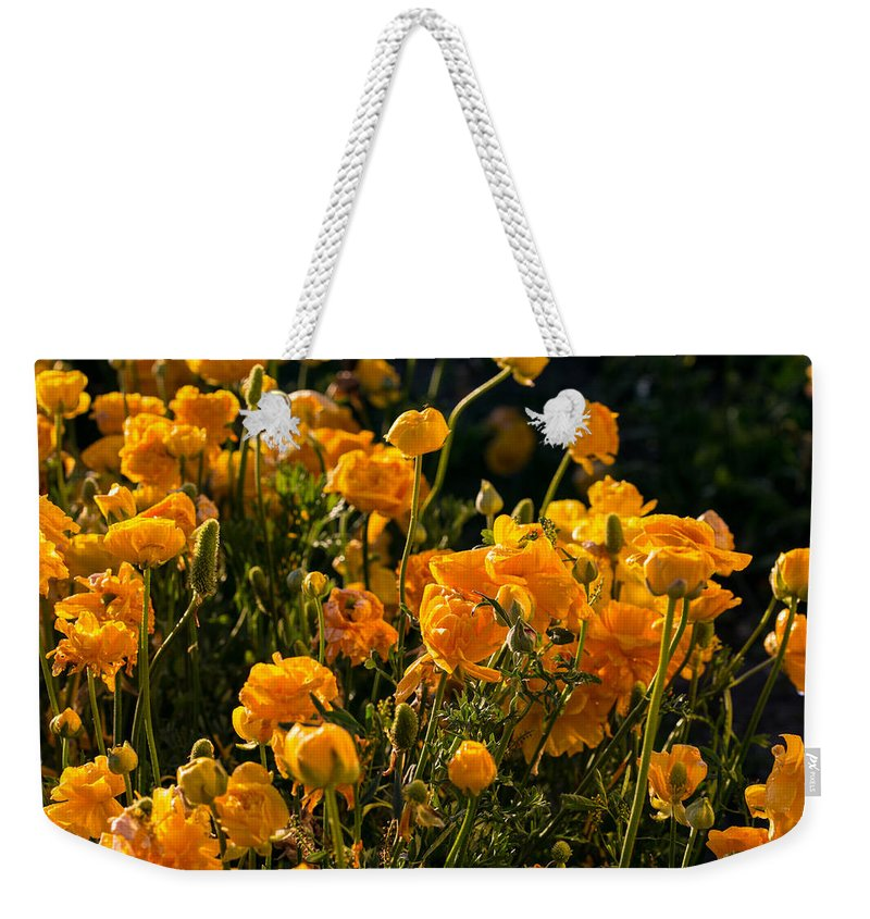 Flowers Weekender Tote Bag featuring the photograph Yellow Rules The Field by Mark Perelmuter