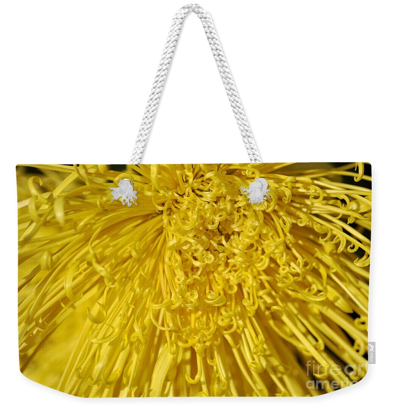 Clay Weekender Tote Bag featuring the photograph Yellow Strings by Clayton Bruster